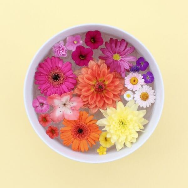 bowl of blooming flowers